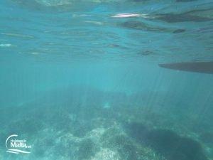 Sea bed st Maria Bay Comino