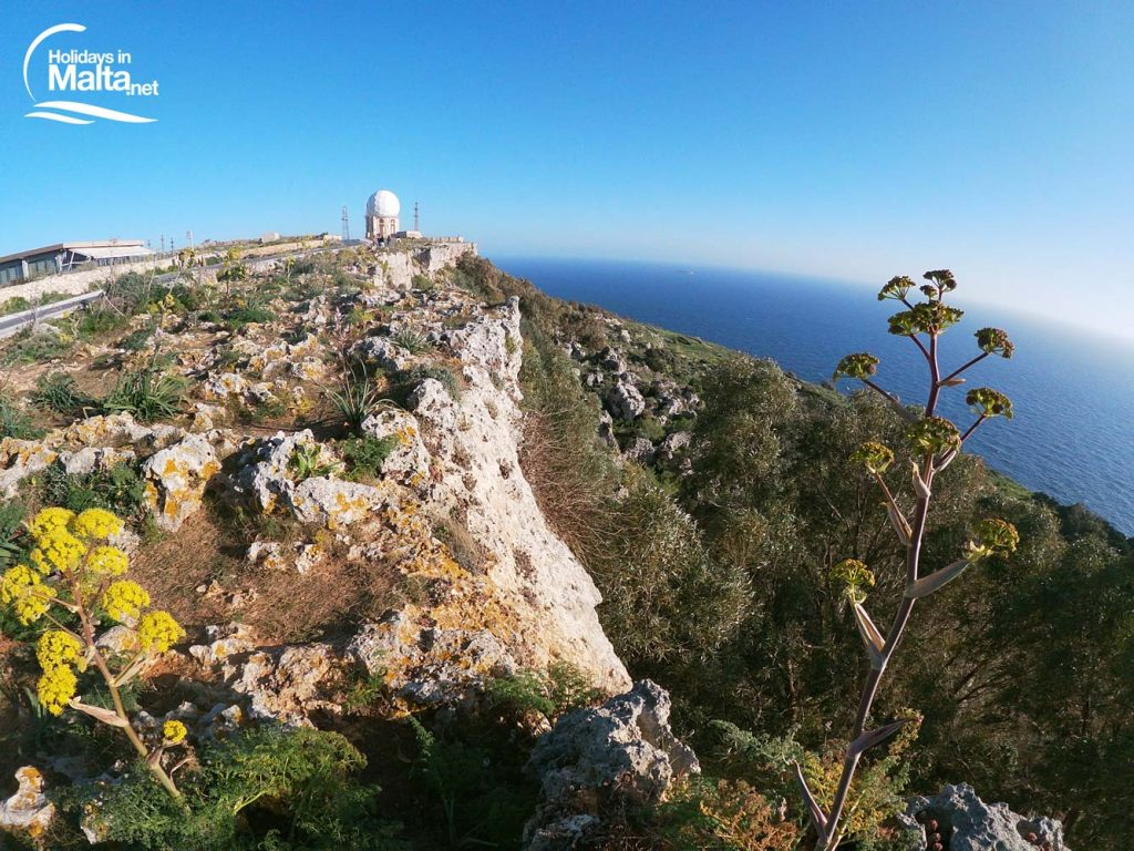 Dingli Cliffs view